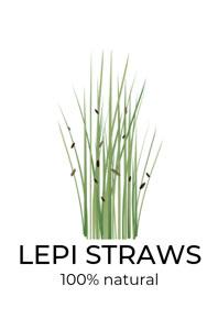 TANZER Agency - Lepi Straws Logo